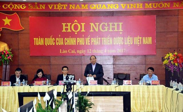 Hội nghị trực tuyến toàn quốc về phát triển dược liệu Việt Nam.